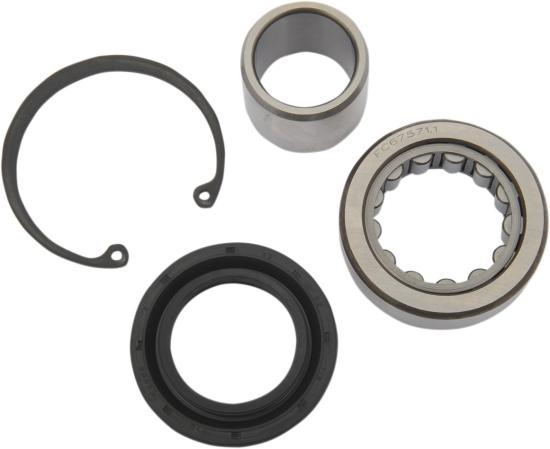 All Balls 25-3102 Inner Primary Bearing Kit Upgrade