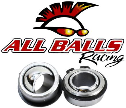 All Balls Racing Swing Arm Bearing//Seal Kit 28-1155