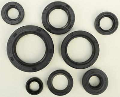Winderosa Oil Seal Kit 822308 Seals