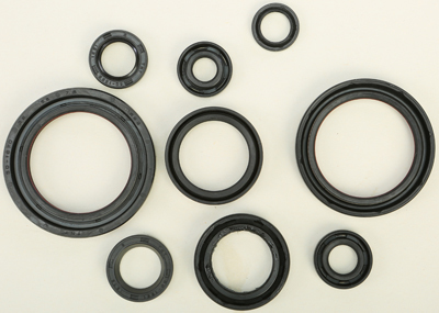 Winderosa 55195 Sealing Gaskets